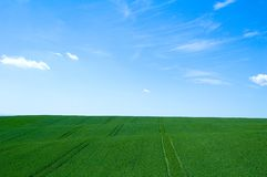 Green field 5 Royalty Free Stock Photos