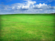 Green field. Greem grass field and cloudy blue sky Royalty Free Stock Images