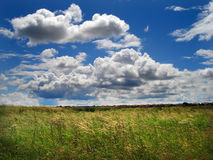 Green field. Greem grass field and cloudy blue sky Stock Photography