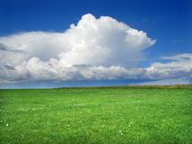 Green field. Greem grass field and cloudy blue sky Royalty Free Stock Photos