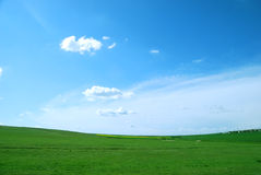 Free Green Field Stock Photography - 9170942