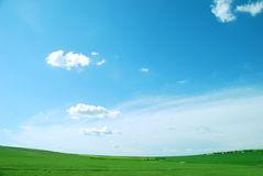 Green field. S and blue sky Royalty Free Stock Photography