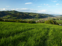 Green field above small village Stock Photography