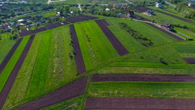 Green field aerial with blue sky stock video