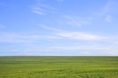 Green field against blue sky Stock Images