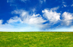 Green field against the blue sky Royalty Free Stock Image