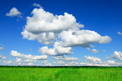 Green Field And Blue Cloud Sky