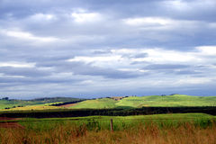 Free Green Field And Clouds Royalty Free Stock Photos - 5027848