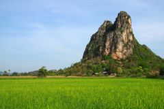 Green field available in Thailand. This picture contain green rice field and the big mountain. Green field available in Thailand Royalty Free Stock Photography