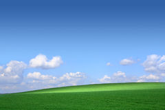 Green field with a background of the blue sky and Royalty Free Stock Photos