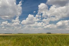 Green field on the background of saturated cloudy sky stock photography