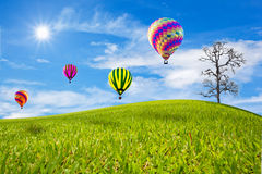 Green field and balloon Royalty Free Stock Photos