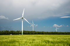 Green field of barley and wind turbines generating electricity Royalty Free Stock Image