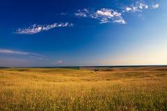 Green field. Beatiful morning green field with blue heaven Stock Photos