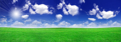 Green field beautiful Stock Photography