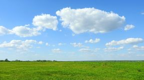 Green field and beautiful cloudy sky, Lithuania Stock Photography