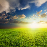 Green field and beautiful sunset Royalty Free Stock Photography