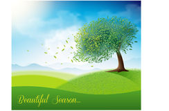Green field with beautiful tree. Vector Royalty Free Stock Photo