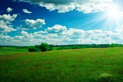 Green field with beauty blue sky and sun Stock Photos