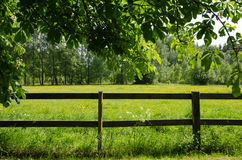 Green field behind a fence Royalty Free Stock Image