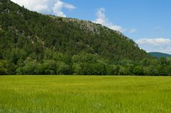 Field with great mountain view royalty free stock photos