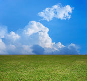 Green field and blue clouds sky. Stock Photography