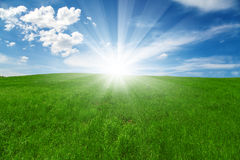 Green field and blue cloudy sky with sun. Natural background Stock Photography
