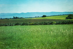 Green field with blue mountains in the countryside Stock Photos