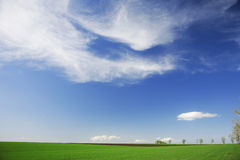 Green field, blue skies, white clouds in spring. Horizontal composition Royalty Free Stock Image