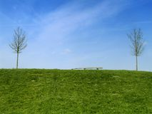 Green Field and Blue Sky. Hill and blue sky background with two bare trees and a bench Stock Photos