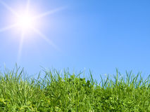 Green field on blue sky Royalty Free Stock Images