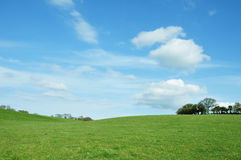 Green Field and Blue Sky. Landscape View of a Lush Green Field and Vivid Blue Sky in Summer Royalty Free Stock Photo