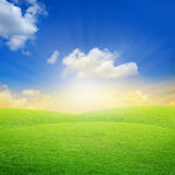 Green field with blue sky. Sunset Stock Photo