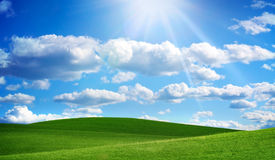 Green field and blue sky. Photo of a green field and blue sky Stock Photos