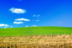 Green field and blue sky. Perfect Background image of Green field with fence and dry grass in foreground and blue sky with white fluffy clouds in background Stock Photos