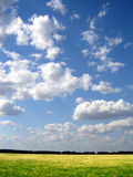 Green field and blue sky. Green field and horison and blue sky Royalty Free Stock Images