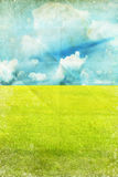 Green field and blue sky. Spring summer background Stock Photography