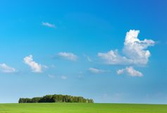 Green field and blue sky. Landscape with green field and blue sky Royalty Free Stock Image