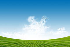Green Field and Blue Sky. Background Stock Images