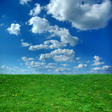 Green field and blue sky. Background Stock Image