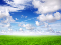 Green field and blue sky during day Stock Photo