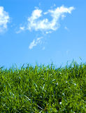 Green field and a blue sky Royalty Free Stock Photos
