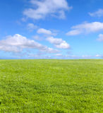 Green field and blue sky. For background Stock Photo
