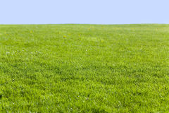 Green field and blue sky. For background Royalty Free Stock Image