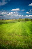 Green field with blue sky above Royalty Free Stock Photography
