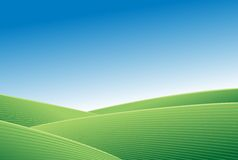 Green field and blue sky abstract background Stock Photography