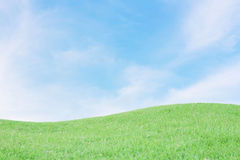 Green field with blue sky Royalty Free Stock Photography
