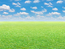 Green field and blue sky background Royalty Free Stock Image