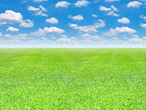 Green field and blue sky background Royalty Free Stock Images