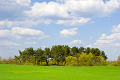 Green field with blue sky and clouds Royalty Free Stock Photography